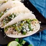 Shredded Chicken Poblano Tacos